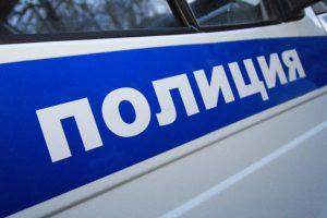 В Мелеузовском районе полицейские задержали подозреваемого в незаконном отстреле двух лосей